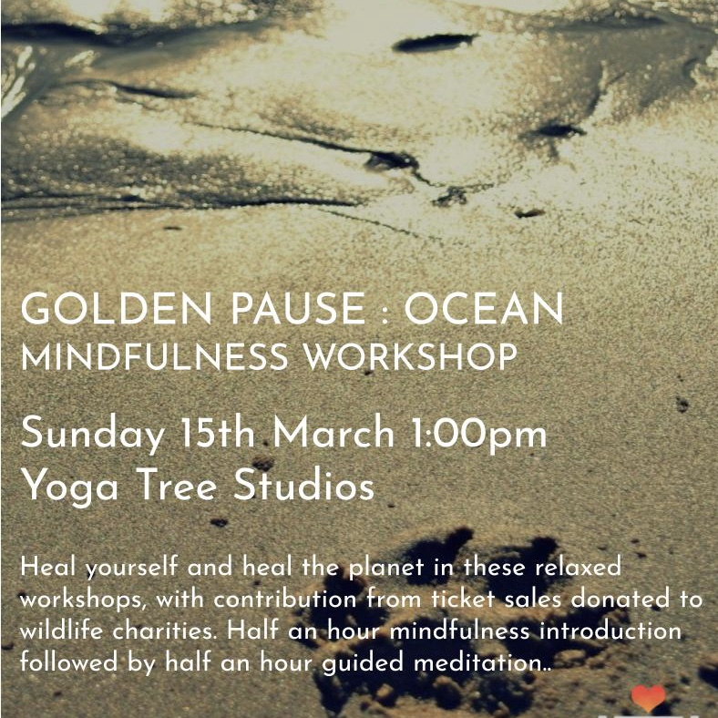 The Golden Pause - The Ocean With Maite Isabel £15 or book this session using a class pass booking Opens 02/03/20