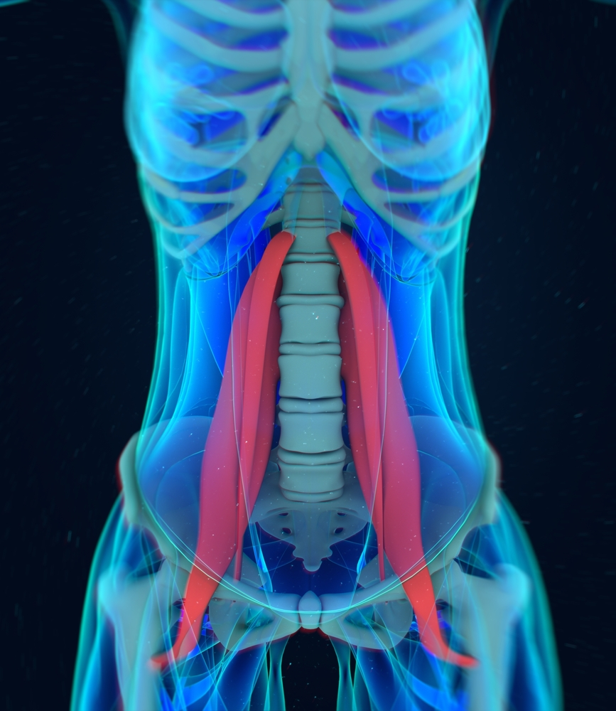 Somatic's and Yin yoga masterclass – focus on releasing the psoas with Brigitte Riley - Price £30