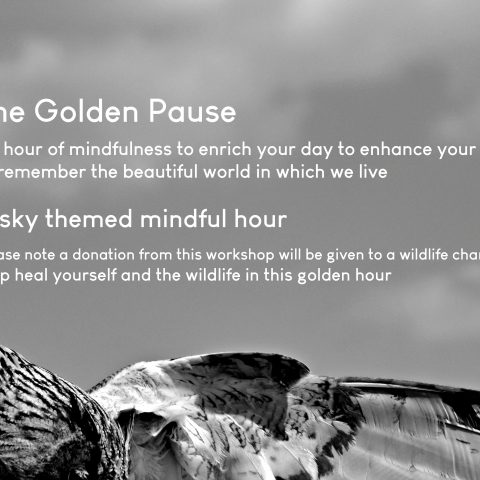 The Golden Pause - an hour of rich mindfulness themed for our planet with Maite Isabel Burt - £15 or book this session using a class pass